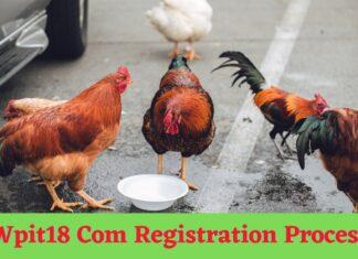 Wpit18 Com Registration